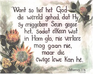 Afrikaans south africa john 316 the bible seed sowers afrikaans m4hsunfo