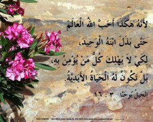 Arabic John 3:16