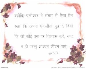 Hindi John 3:16