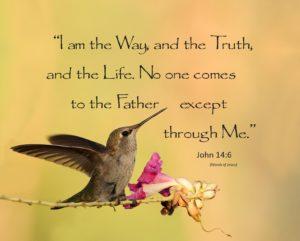 John 14:6 Hummingbird 1