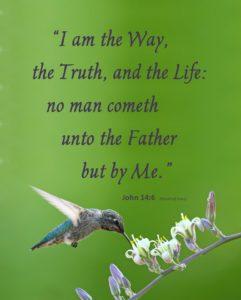 John 14:6 Hummingbird 2