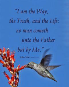 John 14:6 Hummingbird 3