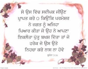 Punjabi John 3:16