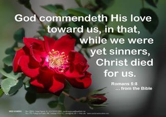 Magnet, Romans 5:8