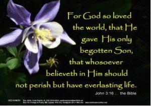 Magnet, John 3:16, Columbine